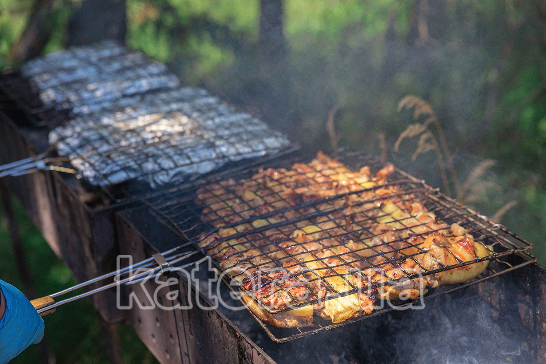 Приготовление шашлыка из курицы на мангале - katera.ua