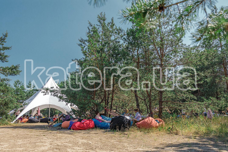 Сосновые деревья на острове Великий - katera.ua