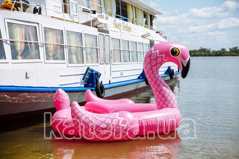 Большой розовый фламинго возле теплохода - katera.ua