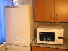 Холодильник и микроволновая печь на кухне на теплоходе Эколог - Katera.ua